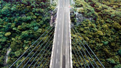 Een brug met bos eronder