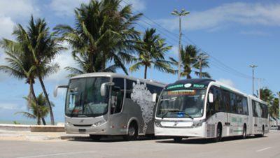 Seguro para Ônibus
