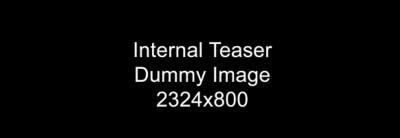 Internal teaser dummy