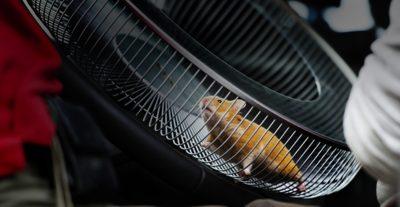 Volvo FMX dynamic steering hamster wheel