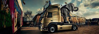 Volvo FM flexibility elephant truck