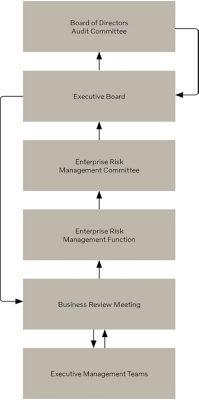 Volvo Enterprise Risk Management Governance chart